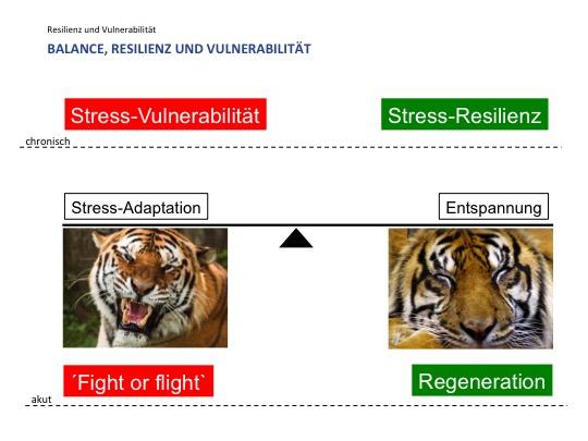 2_Resilienz und Stress