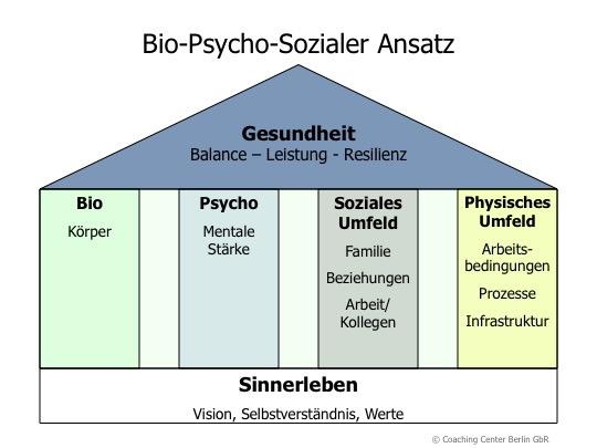 Bio-Psycho-Sozialer Ansatz 3